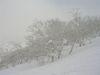 2006_3_5_10niseko_019