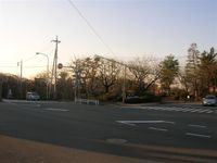 2008_039