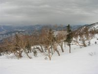 2008_3_15_16yakedake_kuraigahara__3