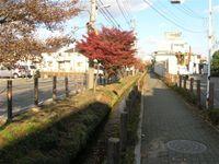 2008_12_6_011