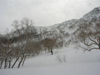 2009_4_4naeba024